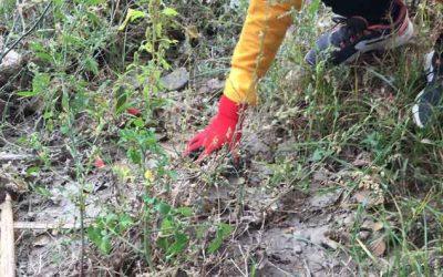 450 litros de basura recogidos en el río Francolí