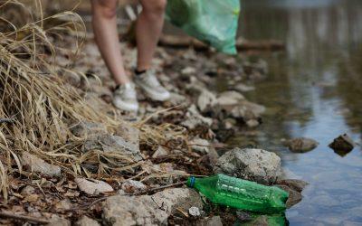 Plástico Vegetal ¿la solución definitiva?