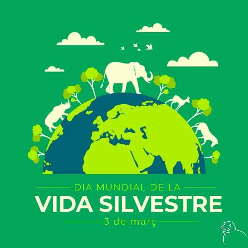 MareTerraFundacioMediterrania_Día_Mundial_Naturaleza