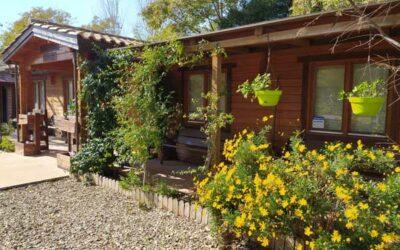 Portes obertes a l'Escola Natura Francolí de Tarragona